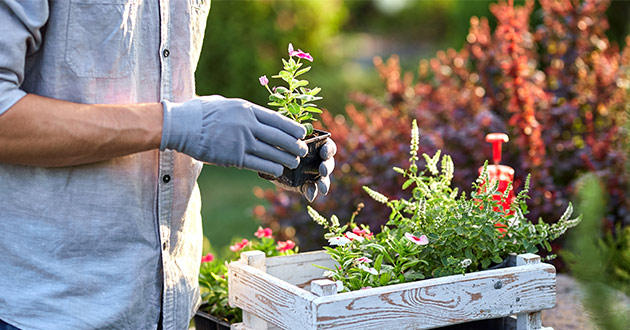 5 gardening trends to give your outdoor space a makeover